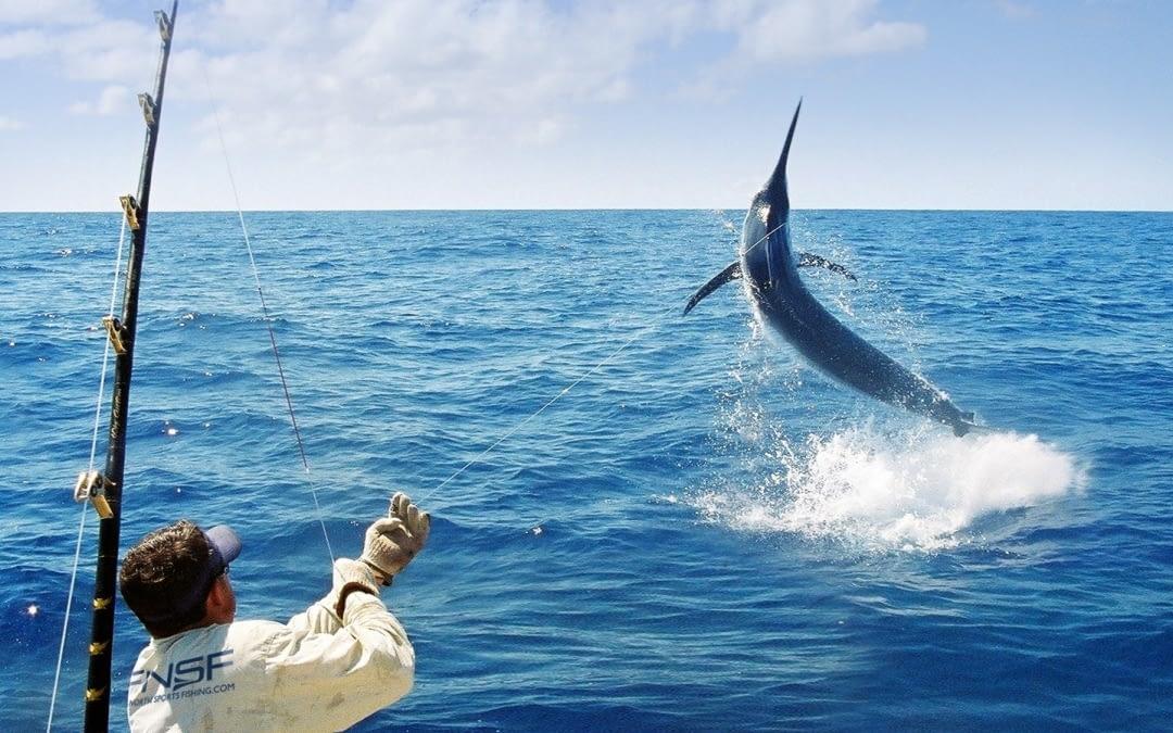 Enjoy Sport Fishing with Taxi on Corralejo