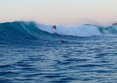 Surf Isla de Lobos